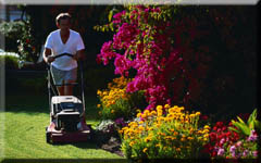 greenskeeper-lawn-care-bridgeport-CT-2